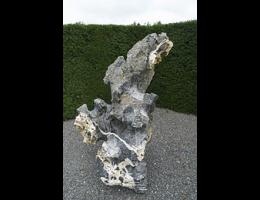 Findling 770 - Solitärfindlinge für Gärten,Showstone,Raritäten,Fabelstein
