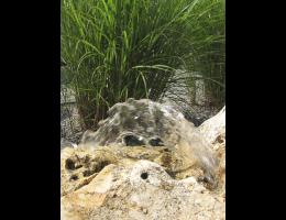 Findling 518 - Quellstein,Wasserfindling