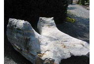 Findling 420 - Solitärfindlinge für Gärten,Showstone,Raritäten