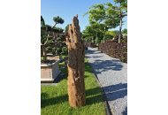 Findling 1051 - Baumstrunk,Holzskulpturen,Kunst mit Holz