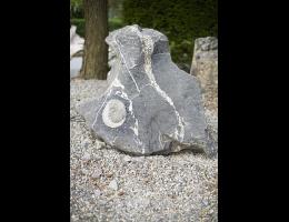 Findling 746 - Kunstform,Kunst am Stein,Raritäten,Skulpturen aus Stein