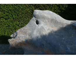 Findling 805 - Steintier,Solitärfindlinge für Gärten,Steintier,Raritäten