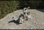 Findling 651 - Solitärfindlinge für Gärten,Gestaltungsstein