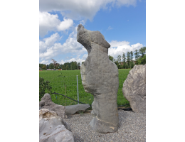 Findling 1091 - Solitärfindlinge für Gärten,Steintier