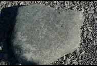 Findling 856 - Solitärfindlinge für Gärten,Gestaltungsstein,Solitärfindlinge für Gärten