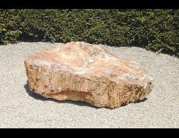 Gestaltungsstein,Raritäten,Showstone,Versteinertes Holz - Findling 685