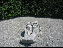 Findling 423 - Quellstein,Wasserfindling