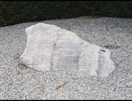 Findling 605 - Solitärfindlinge für Gärten,Gestaltungsstein,Steintier