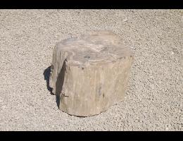Versteinertes Holz,Gestaltungsstein - Findling 689