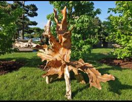 Findling 1036 - Holzskulpturen,Kunst mit Holz