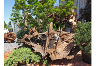 Findling 1047 - Holzskulpturen