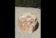 Findling 684 - Versteinertes Holz,Gestaltungsstein
