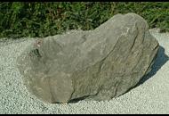 Findling 107 - Solitärfindlinge für Gärten,Gestaltungsstein,Quellstein,Wasserfindling