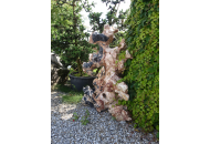 Findling 1197 - Fabelstein,Raritäten,Showstone,Skulpturen aus Stein